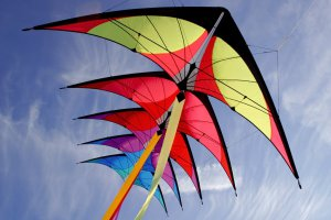 7th Annual Fly and Fling @ McAllister Park | Lubbock | Texas | United States