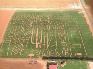 At'l Do Farms Corn Maize @ At'l Do Farms | Lubbock | Texas | United States