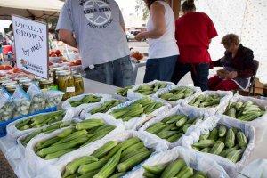 Lubbock Downtown Farmers Market @ Lubbock Downtown Farmers Market   Lubbock   Texas   United States