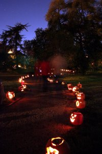 9th Annual Pumpkin Trail @ Lubbock Memorial Arboretum | Lubbock | Texas | United States