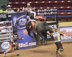 ABC Pro Rodeo @ City Bank Coliseum | Lubbock | Texas | United States