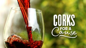 Corks for a Cause @ Kingsgate Center | Lubbock | Texas | United States