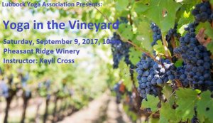 Yoga in the Vineyard @ Pheasant Ridge Winery | Lubbock | Texas | United States