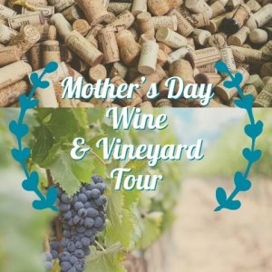 Mother's Day Wine and Vineyard Tour @ West Texas Wine Tours