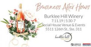 Business After Hours Sponsored By Burklee Hill Vineyards @ Social House Venue & Events