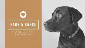 Bark & Barre @ Pure Barre