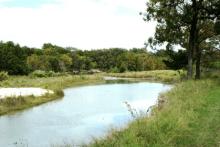 Texas Riparian and Stream Ecosystem Education Program, Junction @ Texas Tech Llano River Field Station